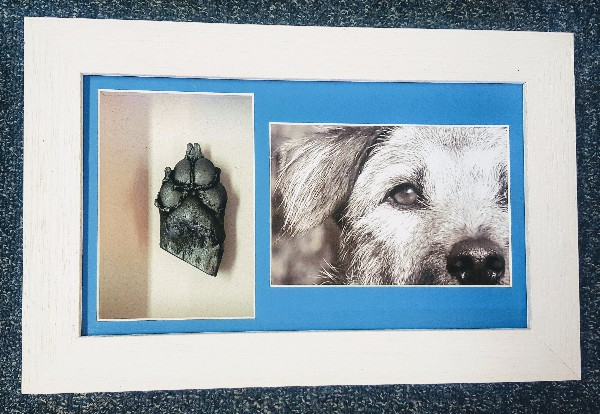 Paw 3D Silver Casts Framed with Photo